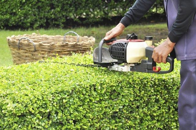 Лучший секатор для сада отзывы - Клуб органического земледелия